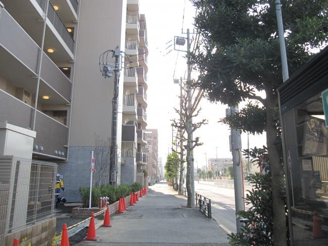 大通り(都道471号線)<br />100m