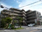 埼玉県さいたま市南区の | 南浦和駅